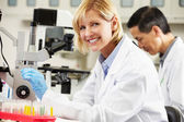Male And Female Scientists Using Microscopes In Laboratory — Stockfoto