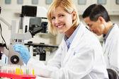 Varón y hembras los científicos usando microscopios en laboratorio — Foto de Stock