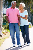 Senior Couple Walking In Park Together — Stock Photo