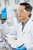 Mâle scientifique travaillant au laboratoire — Photo