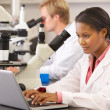 Male And Female Scientists Using Microscopes In Laboratory — ストック写真