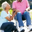 Senior Woman Pushing Husband In Wheelchair — Stock Photo #24650191