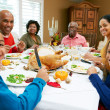 Multi Generation Family Celebrating Thanksgiving — Stock Photo #24650495