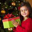 Girl Holding Christmas Present In Front Of Tree — Stock Photo #24650871