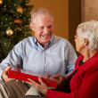 Senior Couple Exchanging Gifts In Front Of Christmas Tree — Stock Photo #24650953