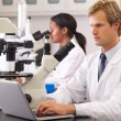 Male And Female Scientists Using Microscopes In Laboratory — Stock Photo #24651193