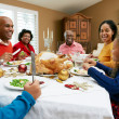 Multi Generation Family Celebrating With Christmas Meal — Stock Photo #24651293