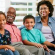 Stock Photo: Portrait Of Grandparents With Grandchildren