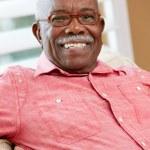Portrait Of Happy Senior Man At Home — Stock Photo #24652715