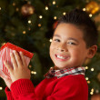 Boy Holding Christmas Present In Front Of Tree — Foto de Stock
