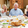Multi Generation Family Celebrating Thanksgiving — Stock Photo #24654621