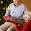 Senior Couple Exchanging Gifts In Front Of Christmas Tree — Stock Photo #24654781