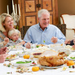 Multi Generation Family Celebrating Thanksgiving — Stock Photo #24654879