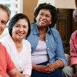 Portrait Of Senior Friends At Home Together — Stock Photo #24654959