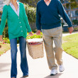 Senior Couple Walking In Park Together With Picnic Basket — Stock fotografie
