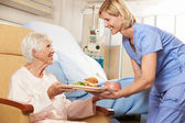 Nurse Serving Meal To Senior Female Patient Sitting In Chair — Stock Photo