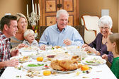 Multi Generation Family Celebrating Thanksgiving — Foto Stock