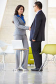 Businessman And Businesswoman Shaking Hands In Modern Office — Stock Photo