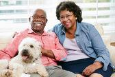 счастливая пара старших, сидя на диване с собакой — Стоковое фото