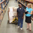 Businesswoman And Male Worker In Distribution Warehouse — Stock Photo