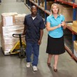 Stock Photo: Businesswoman And Male Worker In Distribution Warehouse