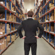 Rear View Of Manager In Warehouse — Stock Photo #25045729
