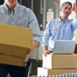 Workers In Distribution Warehouse — Stock Photo #25045757