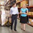 Businesswoman And Colleague In Distribution Warehouse - Foto Stock