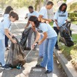 Team Of Volunteers Picking Up Litter In Suburban Street — Stock Photo #25045833