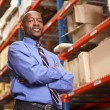 Stock Photo: Portrait Of Businessman In Warehouse