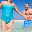 Senior Couple Having Fun In Sea On Beach Holiday — Stock Photo #25046155