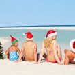 Family Sitting On Beach With Christmas Tree And Hats — Stock Photo #25046267