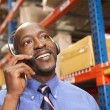 Businessman Using Headset In Distribution Warehouse — Stock Photo #25046979