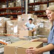 Workers In Distribution Warehouse — Stock Photo #25047191