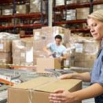 trabajadores de almacén de distribución — Foto de Stock   #25047191