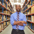 Portrait Of Businessman In Warehouse — Stock Photo #25047943