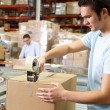 Workers In Distribution Warehouse — Stock Photo #25048221
