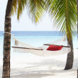 Empty Hammock Between Palm Trees — Stock Photo