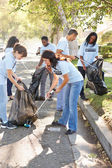 Banliyö sokakta çöp toplama gönüllüleri ekibi — Stok fotoğraf