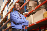 Portret van zakenman in magazijn — Stockfoto