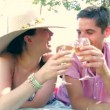Couple lying on rug in countryside enjoying a glass of white wine together. — Stock Video