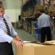 Stock Video: Manager checks consignment details on boxes against details on clipboard.
