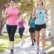 Group Of Female Runners Exercising On Suburban Street — Stock Photo