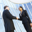 Businessman And Businesswomen Shaking Hands Outside Office — Stock Photo #27553717
