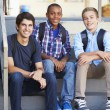 Stock Photo: Group Of Male Teenage Pupils Outside Classroom