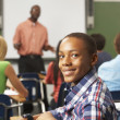 Male Teenage Pupil In Classroom — Stock Photo #27555173
