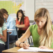 Stock Photo: Female Pupil Studying At Desk In Classroom