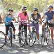 Portrait Of Cycling Club On Suburban Street — Stock Photo #27555721