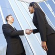 Businessman And Businesswomen Shaking Hands Outside Office — Stockfoto #27555727