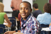 Male Teenage Pupil In Classroom — Stock Photo